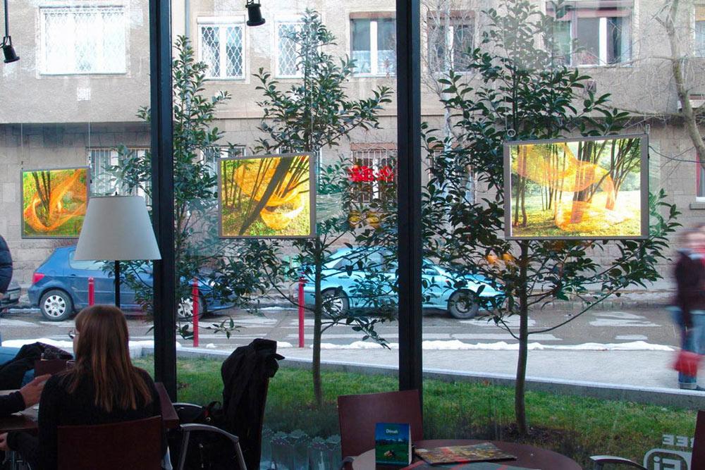 Fotókiállítás Pallas világító paneleinkkel a Tranzit Art Café-ban (2006)